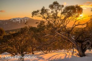 Mt. Buller sunset, from Mt. Sterling